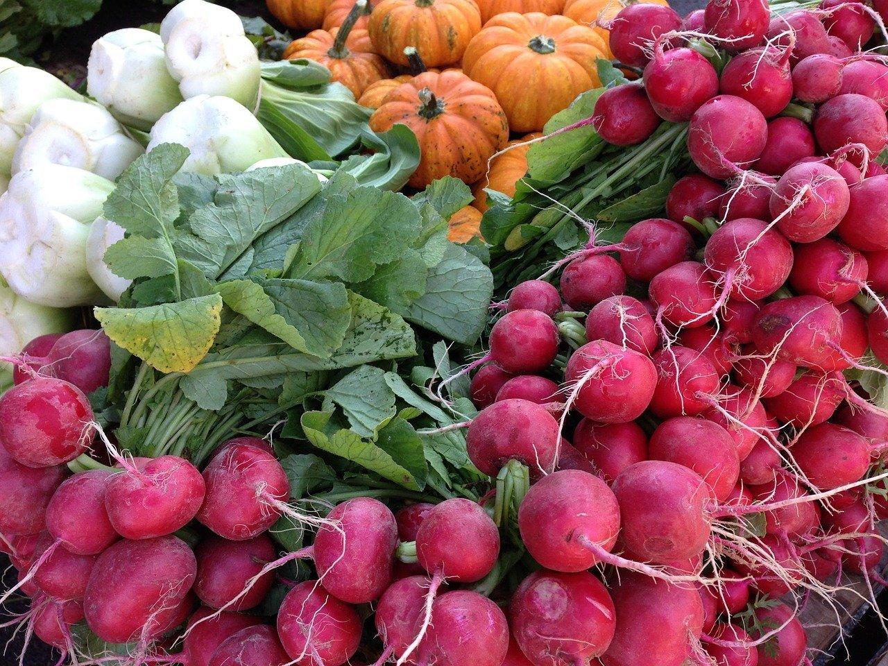 Frisches Gemüse - Nahrung in Rohkostqualität