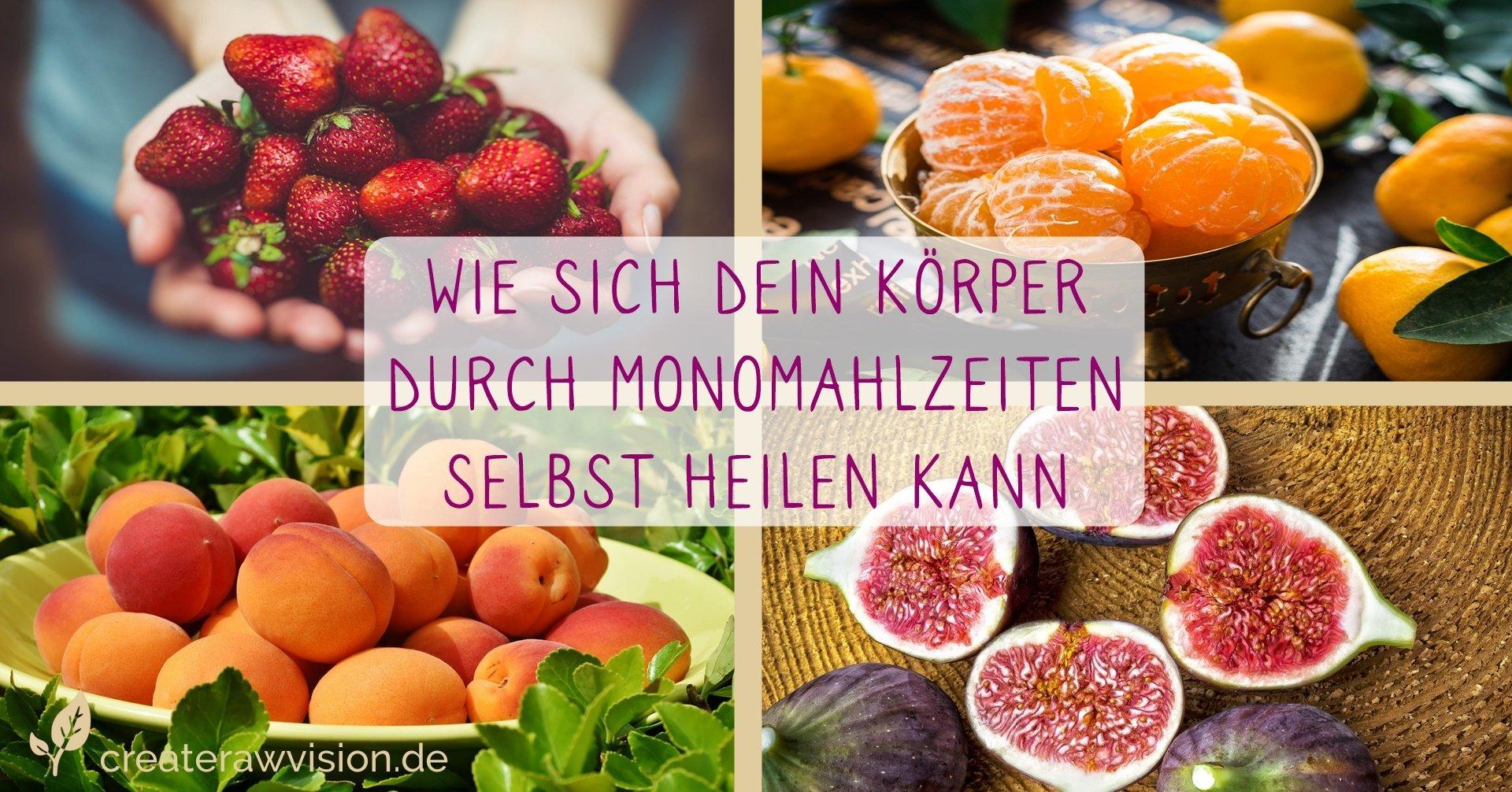 Erdbeeren, Aprikosen, Mandarinen und Feigen für Monomahlzeiten