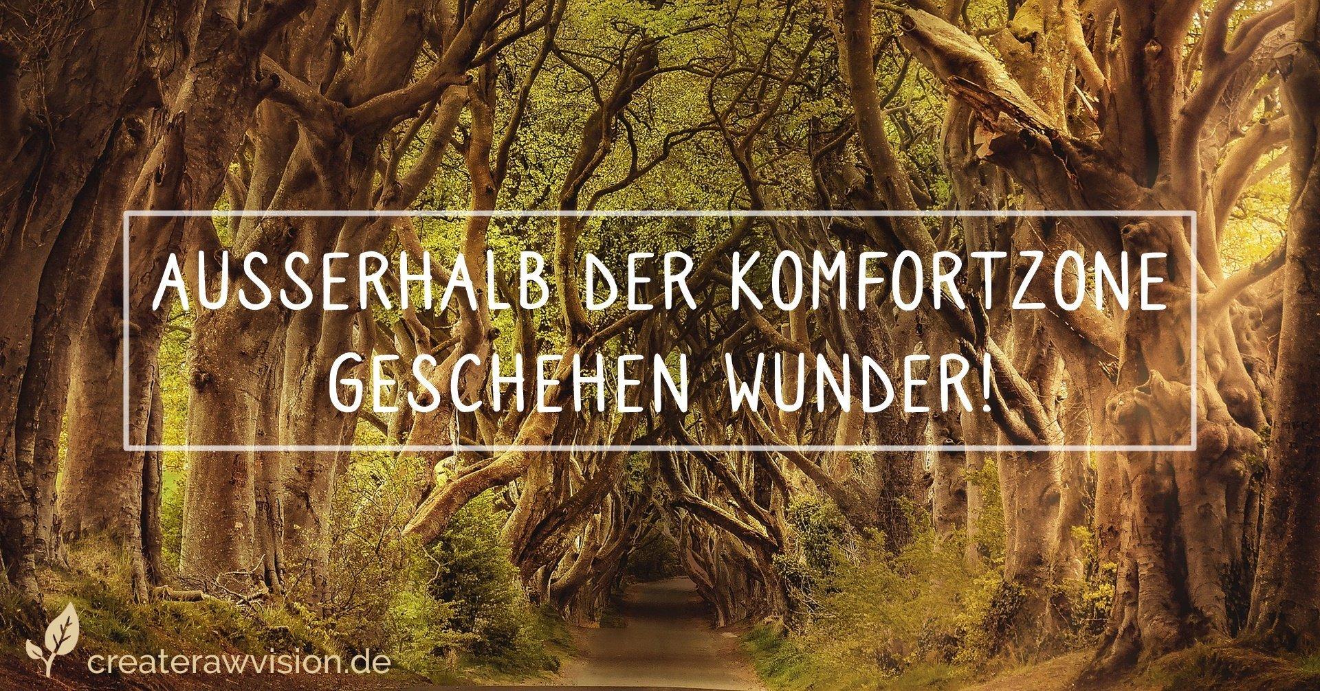 Komfortzone verlassen - Waldweg