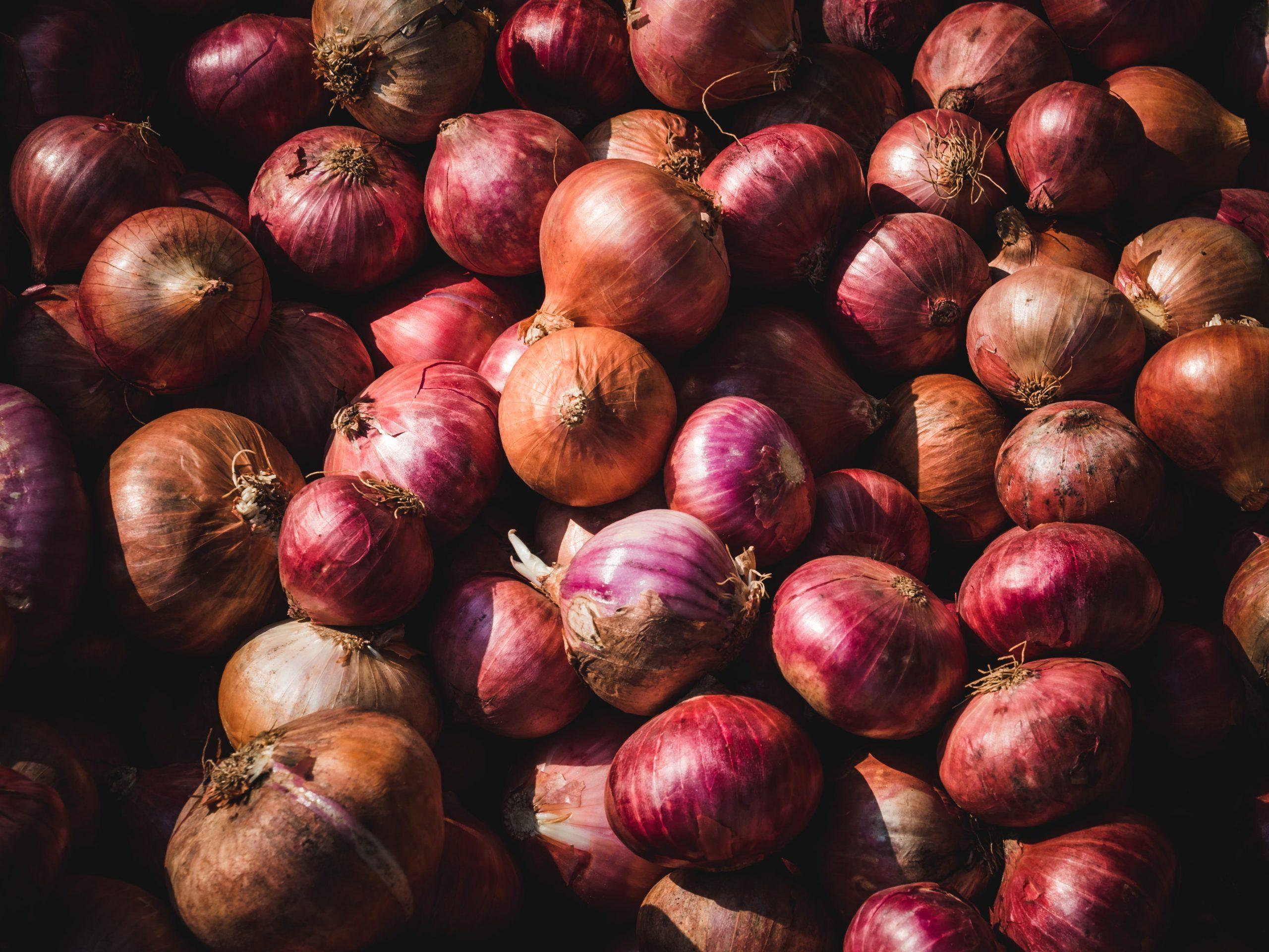 Zwiebeln für Zwiebelschmelz